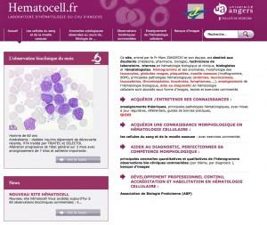 hematocell