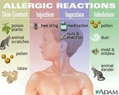 imagesallergie